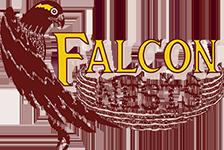 Falcon Nests